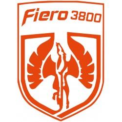 Fiero 3800 Pegasus Logo